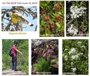 On The Bluff Trail, June 15, 2015