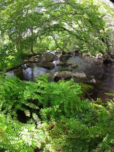 The Woodens River  just below Joshua Slocum Trail Sep 16, 2015